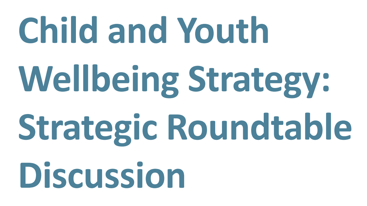 Child & Youth Wellbeing Strategy roundtable